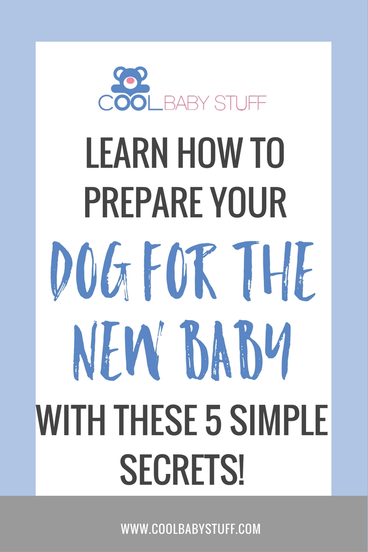 While your dog might be aware of the changes that are occurring, they don't understand. Here are some tips on how to prepare your dog for the new baby.