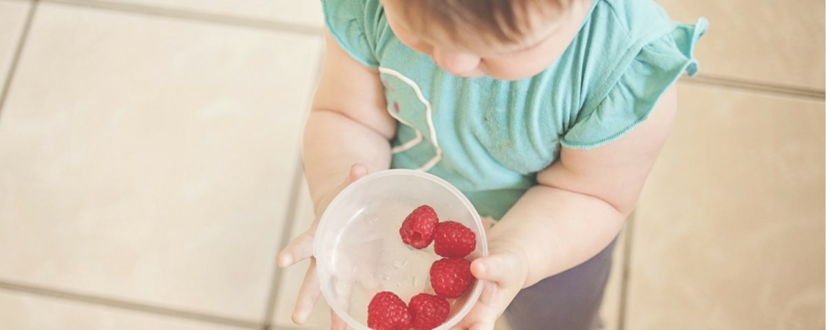 The Beginners Guide To Baby Led Weaning