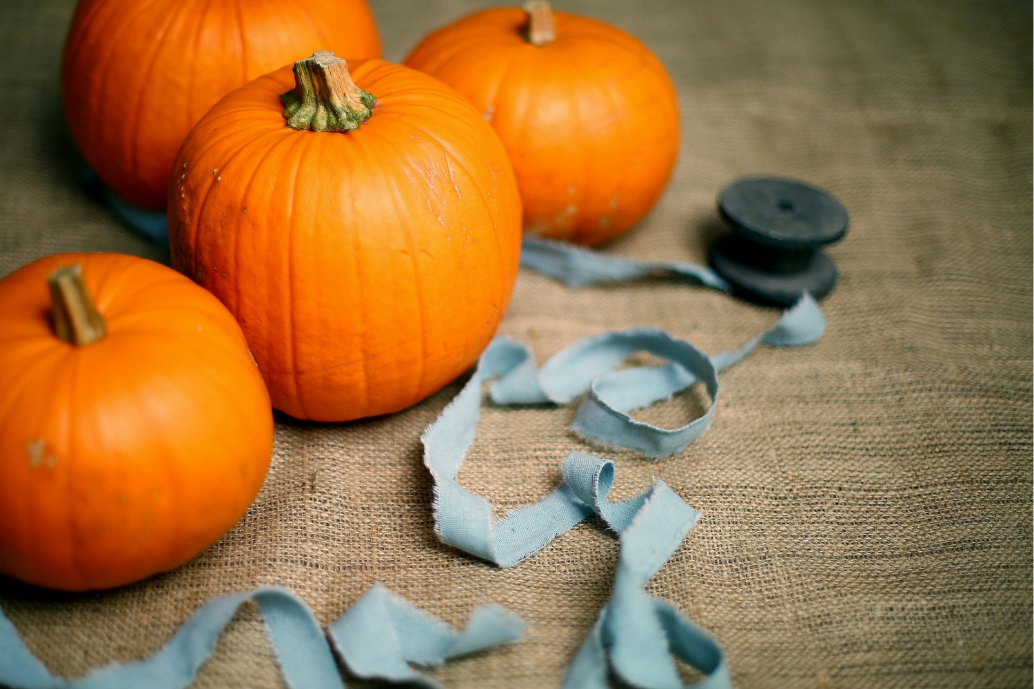 5 Simple and Adorable Fall Craft Ideas For Young Kids
